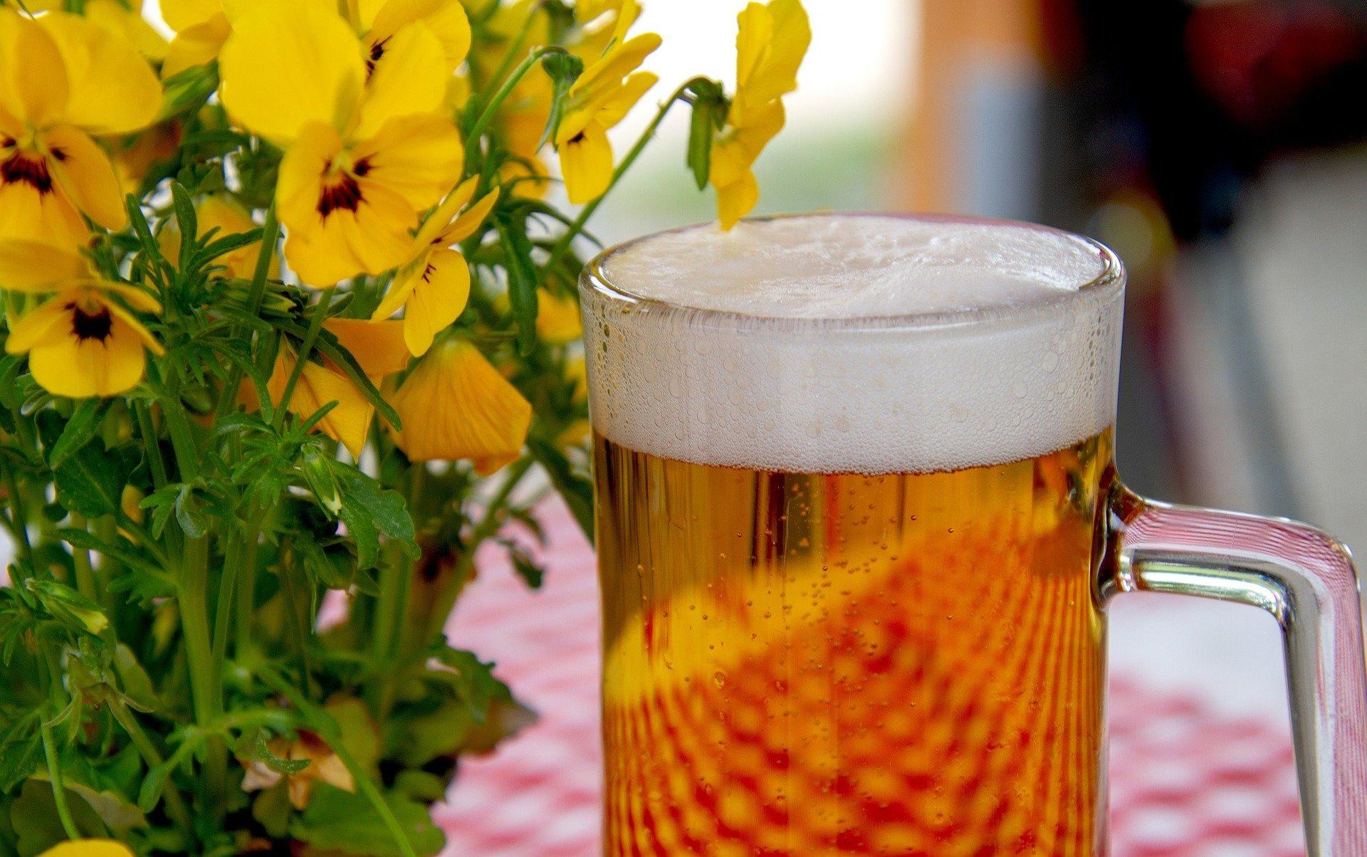 Wein vor Bier, oder Bier vor dem Wein? So oder so, werden Sie verkatert, findet Studie