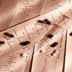 Making sense der letzten Blutdruck-Medikament erinnert