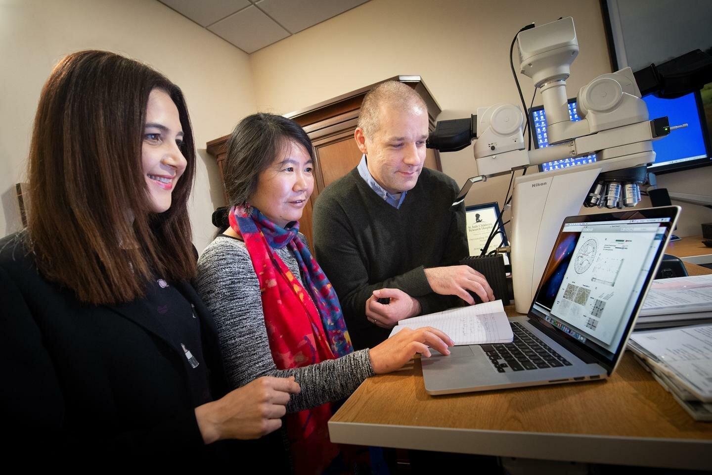 Genomische Tests von einem einzigen Patienten zeigt ein gen Häufig mutiert in der pädiatrischen Melanomen