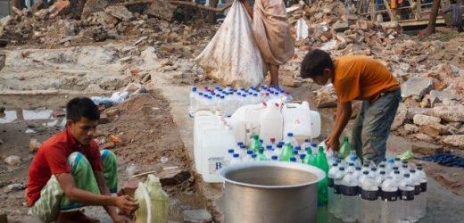 Stoppen der cholera in seine tracks mit Bakteriophagen
