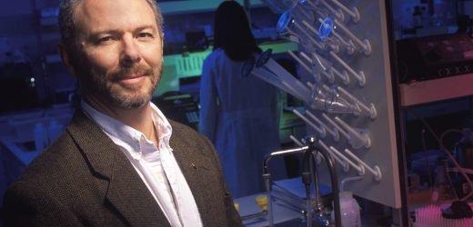 Die Forscher sehen den gesundheitlichen Auswirkungen über Generationen hinweg von der beliebten Unkraut-killer