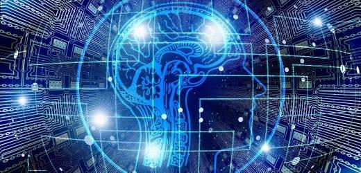 Thalamus und Großhirnrinde Wechselwirkungen beeinflussen die Entscheidung auf die sensorischen Wahrnehmungen