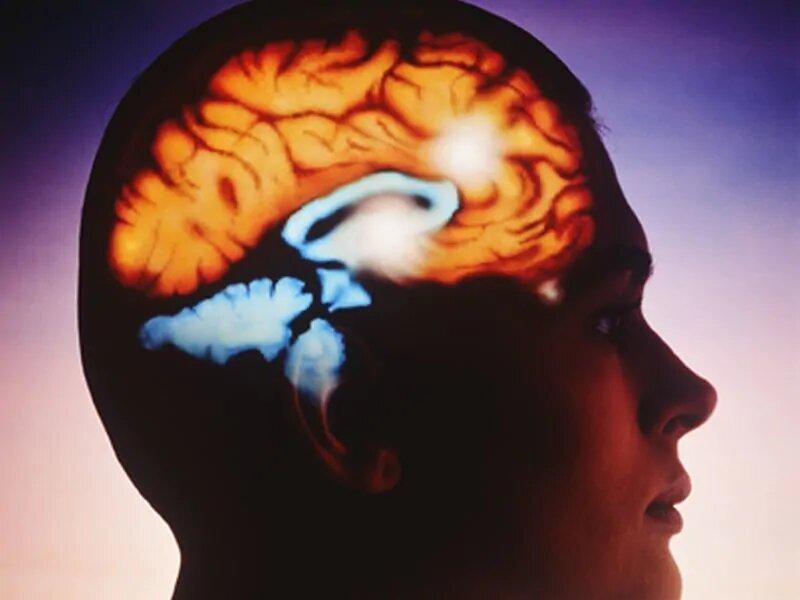 Licht, inkrementelle körperliche Aktivität kann helfen, reduzieren Gehirn Altern