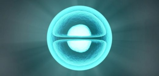 Ersten Ereignisse, das in den Stammzellen zu spezialisierten Zellen für die Entwicklung von Organen