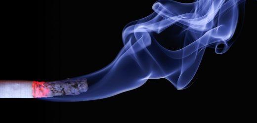 Preconceptional und pränatalen Exposition auf die väterliche Rauchen beeinträchtigt die Samenqualität von Erwachsenen Söhne