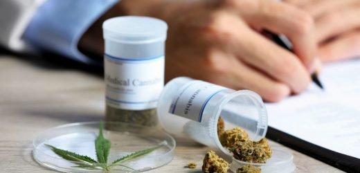 Abnehmen: Cannabis als neues Geheimmittel gegen Übergewicht