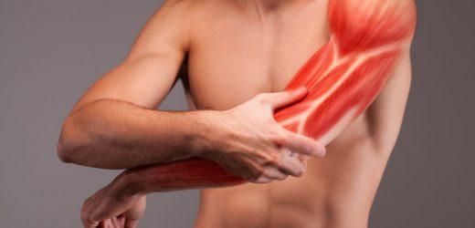 Muskelaufbau: Mehr Wiederholungen oder eher höhere Gewichte beim Krafttraining nutzen?