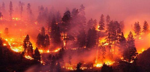 AHA news: Wo gibt ' s wildfire Rauch, kann es Herz-Probleme