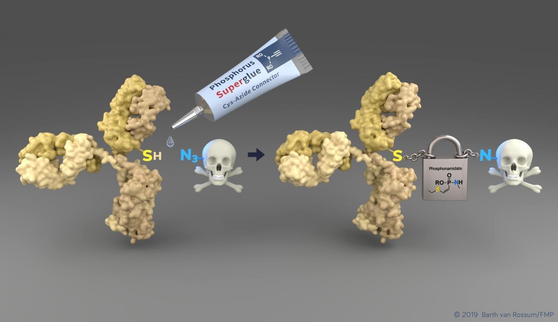 Bringen Krebs-Medikamente sicher an Ihr Ziel
