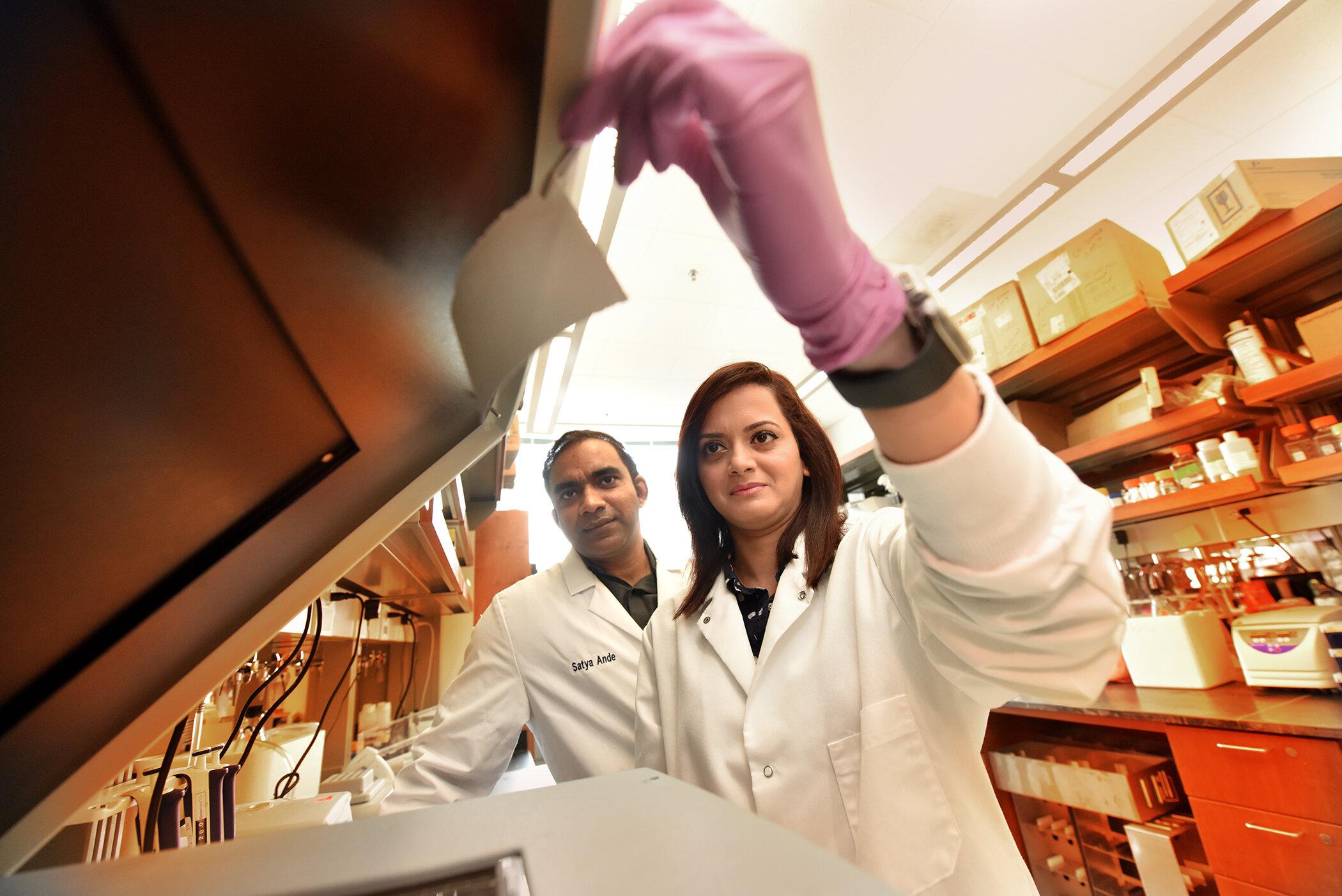 Enzym, das hilft, schützen uns vor stress verbunden, um Leber-Krebs-Wachstum