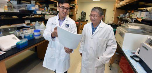 Mehr prädiktive genetische Risiko score gesucht für Typ-1-diabetes