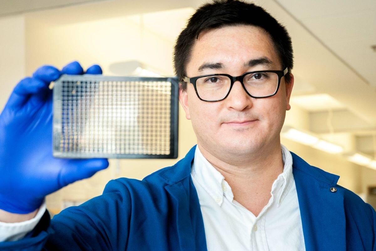 Forschung zeigt Potenzial, Behandlungen für tödlichen tropischen Krankheit