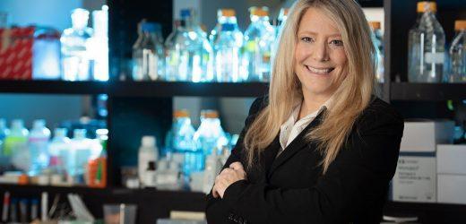 Forscher entdecken potenzielles Medikament zur Behandlung von Herzinfarkten