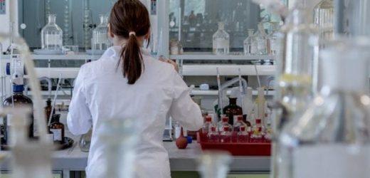 Studie wirft ein neues Licht auf das Wachstum von Blasenkrebs