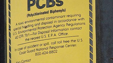 Die Exposition gegenüber Umwelt-Pcb beeinträchtigt die Funktion des Gehirns bei Mäusen