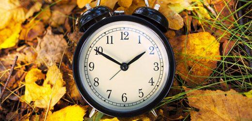 Experte: Dieses Jahr machen wir standard time, permanent