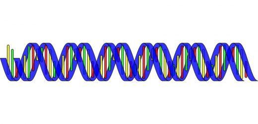 Mutationen verbunden, um die expression der Gene, die mit komplexen Eigenschaften