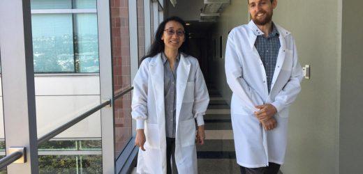Im Herzen der regeneration: Wissenschaftler offenbaren eine neue Grenze in der kardiologischen Forschung