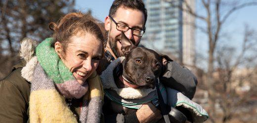 ADT-Partner mit ASPCA, um Weitere Menschen zu Schützen und Ihre Haustiere