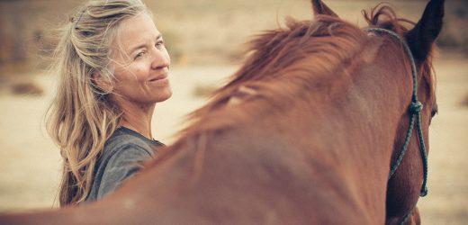 ASPCA Nimmt Auf Das Richtige Pferd-Initiative zu Erhöhen Equine Annahme Bemühungen Bundesweit