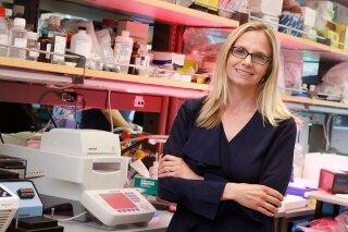 """Genetischer """"Fingerabdruck"""" kann die ID Brustkrebs-Patienten, die wahrscheinlich profitieren von potenziell toxischen chemo, findet Studie"""