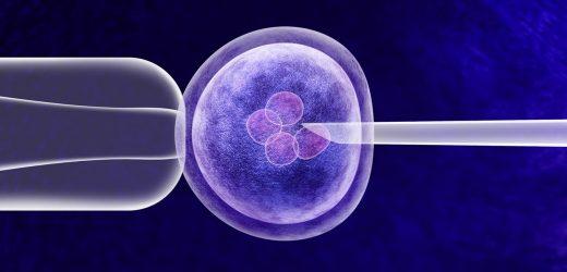 Ein Jahr nach dem ersten CRISPR Babys, strengere Regelungen