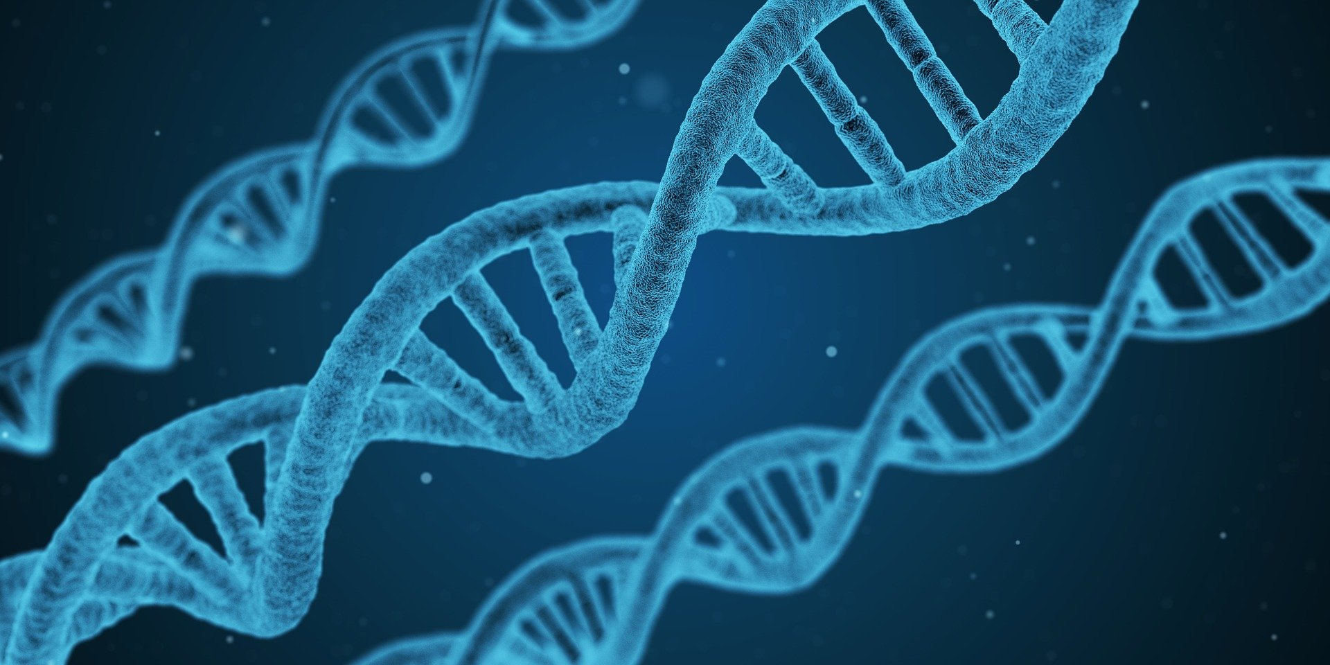 Die Berechnung der genetischen links zwischen Krankheiten, ohne die genetischen Daten