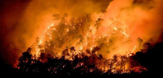 2017 San Diego wildfire erhöht pädiatrischen NOTAUFNAHME Besuche für Probleme mit der Atmung