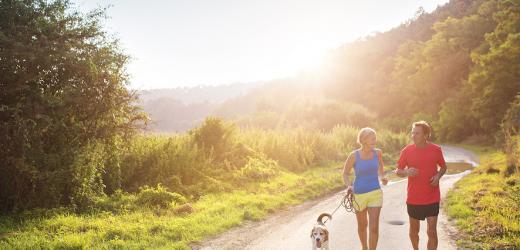 Spaß Möglichkeiten, um Übung Mit Ihrem Hund zu Holen! Pet Care