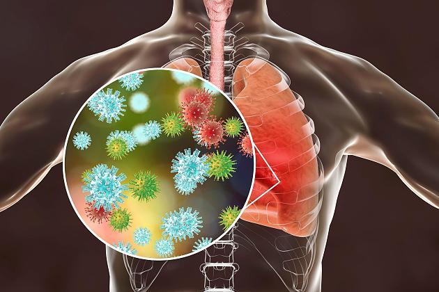 FAQ zum Coronavirus