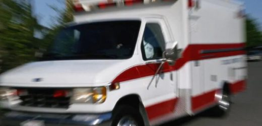Experten nennen für Pädiatrische überlegung in EMS planen