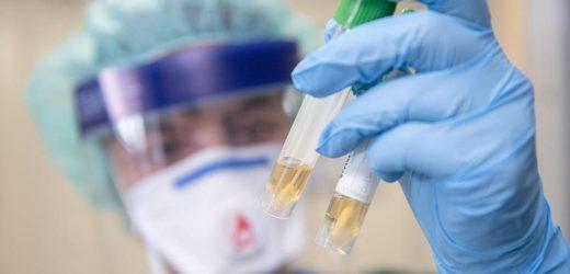Erster Corona-Toter in Frankreich – Virus springt nach Afrika