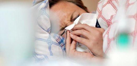Influenza-Alarm: 80.000 Deutsche an Grippe erkrankt – welche Regionen betroffen sind