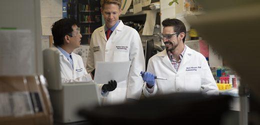 Strahlentherapie für Darmkrebs funktioniert besser, wenn ein bestimmtes protein blockiert
