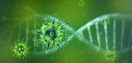 Europa stockt virus response-Infektionen steigen