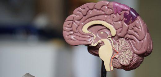 Neue neurodegenerative Erkrankung Entdeckung