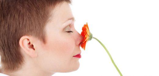 Mutter Nase beste: Kinder-und Körpergeruch bietet olfaktorische Hinweise auf Entwicklungsstufen