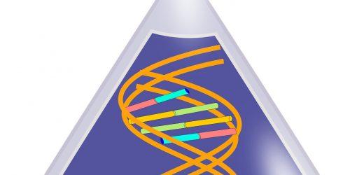 Neuartige Klasse von spezifischen RNAs erklären kann depression erhöht die Anfälligkeit bei Frauen