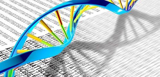 Genetische Datenbank bietet seltene Krankheit hinweisen und Parkinson hoffen