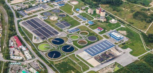 Studie schlägt vor, dass Abwasser bei der Behandlung von Pflanzen verwendet werden kann als ein barometer für die COVID-19 Infektionsraten