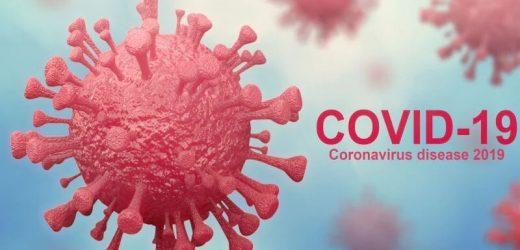 Wie gut tun die Amerikaner wissen, die Fakten über COVID-19?