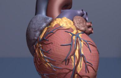 Cleveland clinic Forscher finden steigen broken-heart-Syndrom während COVID-19-Pandemie
