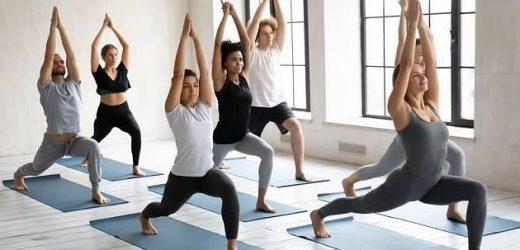 Yoga-Test: Welcher Yoga-Stil passt am besten zu dir?