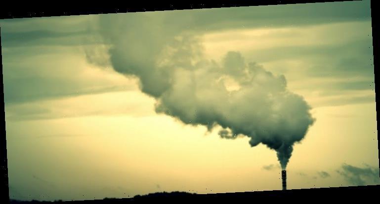 COVID-19: Mehr Todesfälle wegen Luftverschmutzung – Heilpraxis