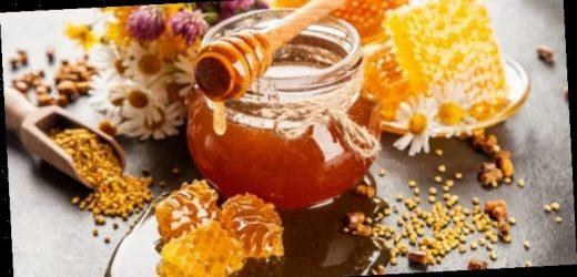 So wird Honig Teil einer gesunden Ernährung – Heilpraxis