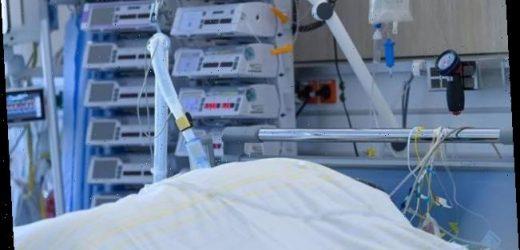 Fallzahlen am Donnerstag: 22.268 neue Corona-Infektionen in Deutschland gemeldet