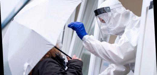 Neuer Höchststand: RKI meldet 23.648 Corona-Neuinfektionen