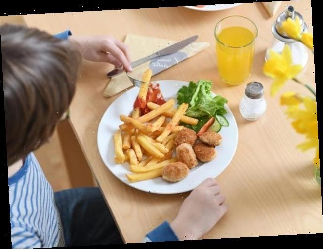 Britin (19) isst 15 Jahre nur Pommes und Chicken Nuggets – dann lässt sie sich hypnotisieren