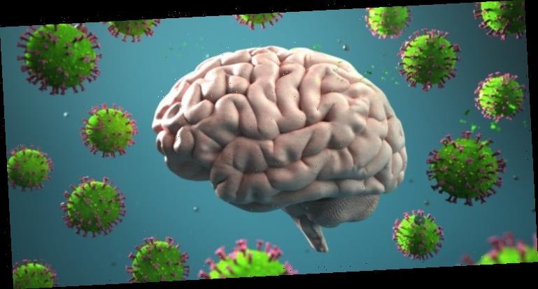 Coronavirus-Studie: SARS-CoV-2 gelangt durch die Nase ins Gehirn – Heilpraxis