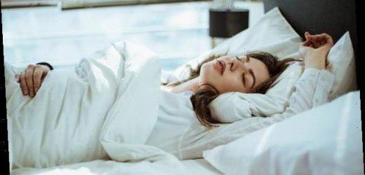 Wahrheit oder Mythos?: Verschluckt man im Schlaf wirklich Spinnen?